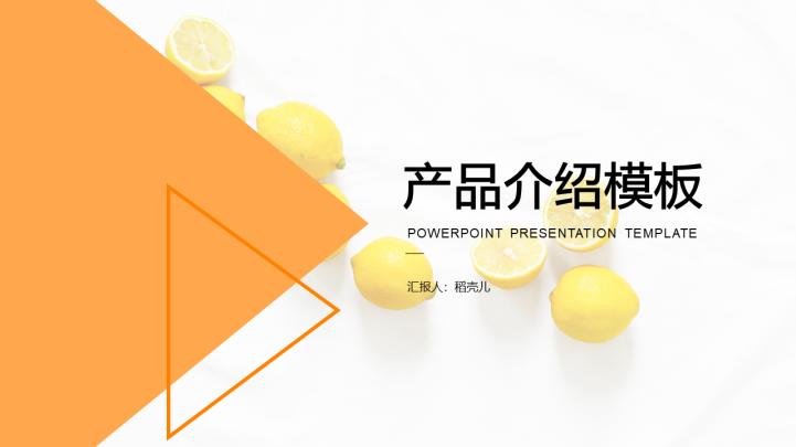 项目商务推介产品介绍PPT模板