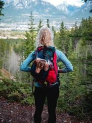 背著狗狗旅行的美女圖片