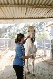 牧馬人和她的馬圖片