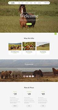 養馬場畜牧業網站HTML5模板