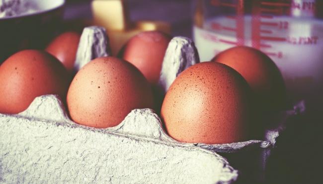 常吃高蛋白食物对身体好